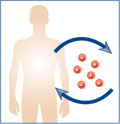 Immune response monitoring for adoptive cell therapy when patients infused with own stimulated T cells