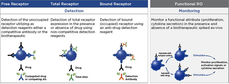 Receptor occupancy assay method, functional monitoring